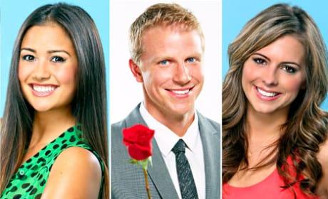 Bachelor Season 17 Final 2
