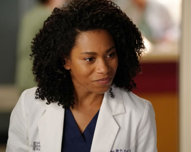 Maggie's on the Case - Grey's Anatomy Season 14 Episode 2