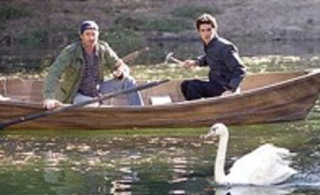 Swan Song Picture