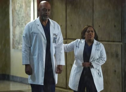 Watch Grey's Anatomy Season 13 Episode 9 Online