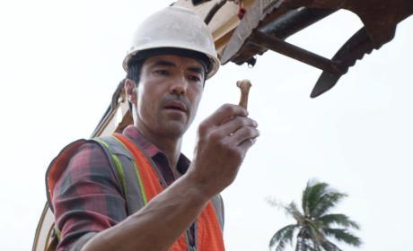 All in the Bones - Hawaii Five-0 Season 7 Episode 22