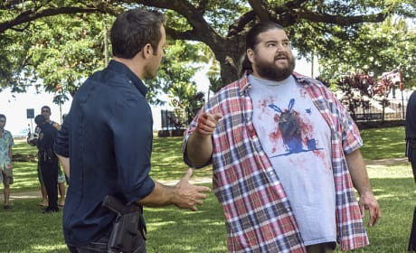 A Conspiracy Theorist Murder - Hawaii Five-0