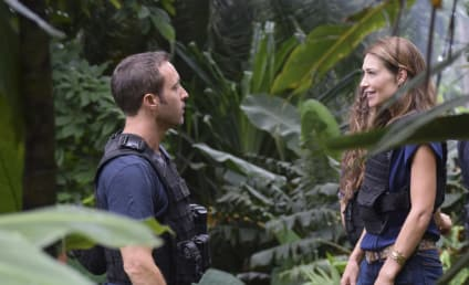 Hawaii Five-0 Season 8 Episode 5 Review: At Kama'oma'o, The Land of Activities