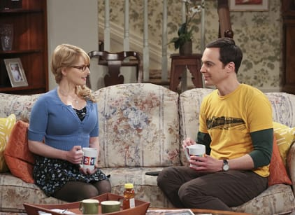 Watch The Big Bang Theory Season 9 Episode 4 Online