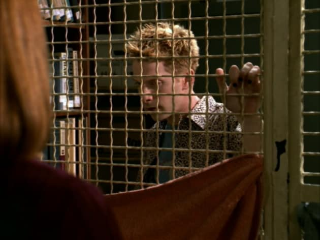 Caged Beast - Buffy the Vampire Slayer Season 3 Episode 4