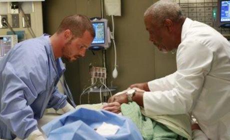 Webber and Karev