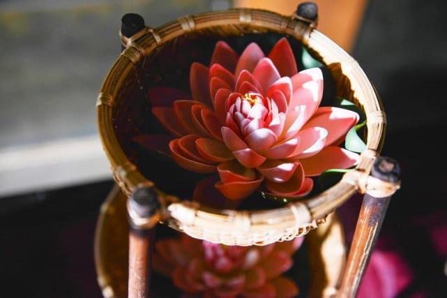 The Lotus Flower - Satisfaction Season 1 Episode 10