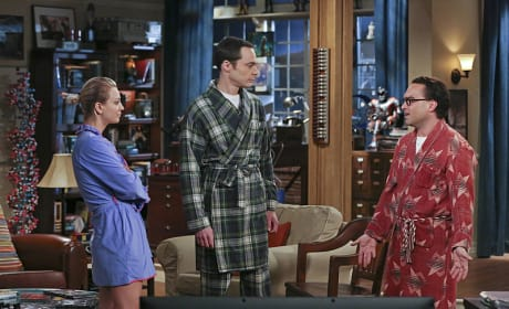 Oh Leonard, What Did You Do? - The Big Bang Theory Season 9 Episode 2