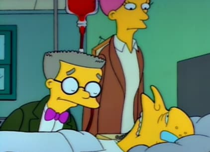 Watch The Simpsons Season 2 Episode 22 Online