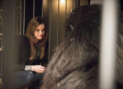 Watch The Flash Season 2 Episode 7 Online