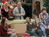 The Big Bang Theory Season 7 Episode 11