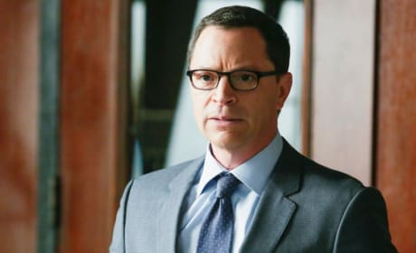 Attorney General David Rosen - Scandal Season 4 Episode 22