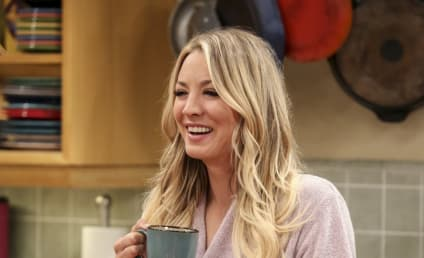 Watch The Big Bang Theory Online: Season 10 Episode 18
