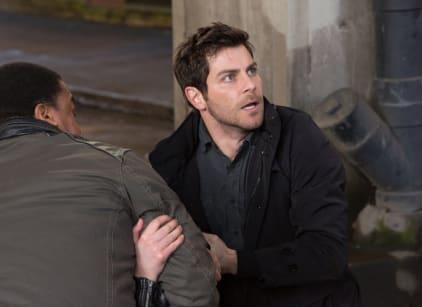 Watch Grimm Season 3 Episode 19 Online