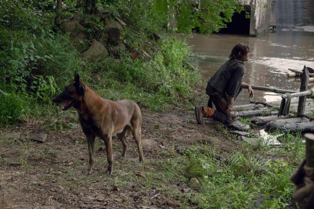 Daryl's Best Friend - The Walking Dead Season 9 Episode 7