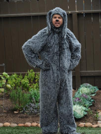 Wilfred Picture