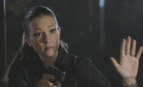 A Cautious Approach - Criminal Minds Season 12 Episode 19