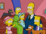 Documentary Crime - The Simpsons