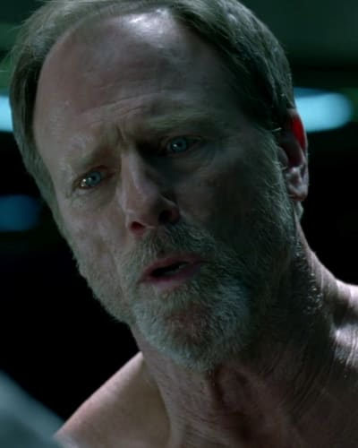 Louis Herthum Westworld