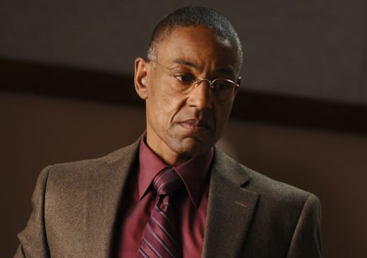 Gustavo Fring Picture