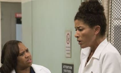 Grey's Anatomy Season 13 Episode 10 Review: Let's Make a Deal?