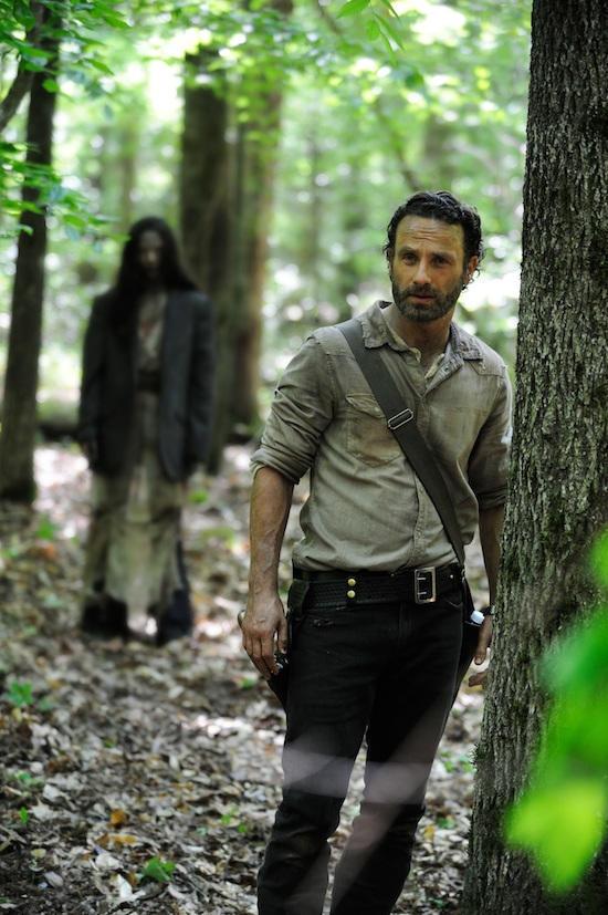 Walking Dead Season 4 Photo