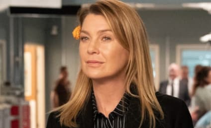 Grey's Anatomy: Ellen Pompeo Shares First Season 17 Photo - What Does it Mean?