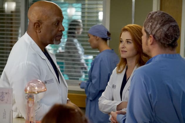 Guess Who's Back? - Grey's Anatomy Season 13 Episode 14