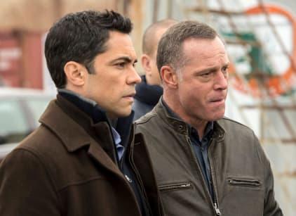 Watch Law & Order: SVU Season 16 Episode 20 Online
