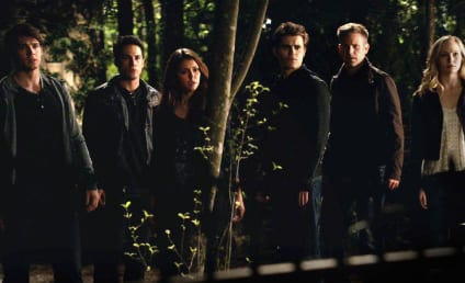 The Vampire Diaries Season 6: How Will Elena Cope?