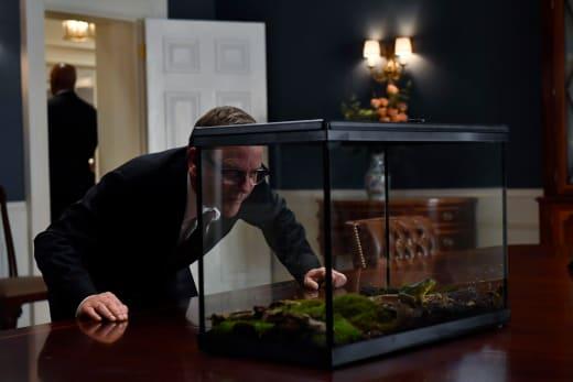 A Frog Gift - Designated Survivor Season 2 Episode 3