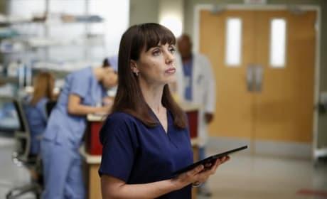 Constance Zimmer Grey's Anatomy Photo