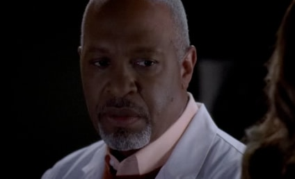 Grey's Anatomy Spoilers From Kevin McKidd, James Pickens, Jr.