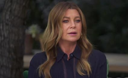 Ellen Pompeo on Grey's Anatomy Conclusion: 'I Want To Make Sure We Do It Right!'