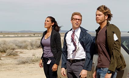 NCIS: Los Angeles Review: Frelting the Ice