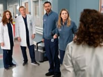 Grey's Anatomy Season 15 Episode 20