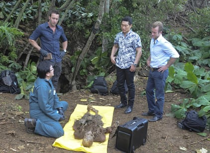 Watch Hawaii Five-0 Season 6 Episode 1 Online