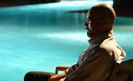 Walt by the Pool