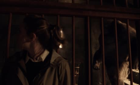 Grodd approaches! - The Flash Season 3 Episode 13