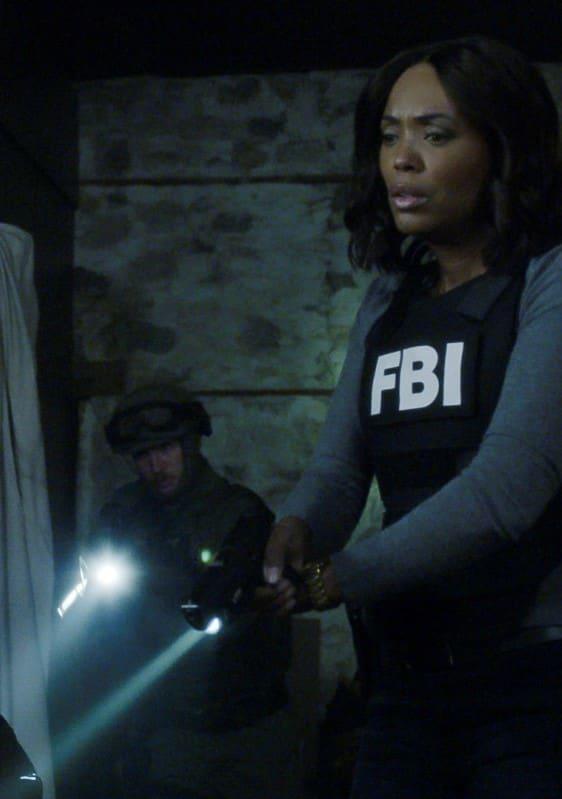 Watch Criminal Minds Online Season 14 Episode 11 Tv Fanatic