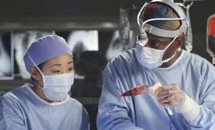 Grey's Anatomy Caption Contest XXXIII