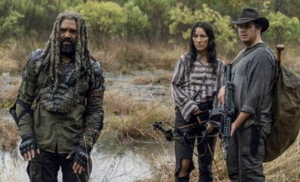 The Walking Dead Cast Teases Season 11, the Long Road to the Series Finale