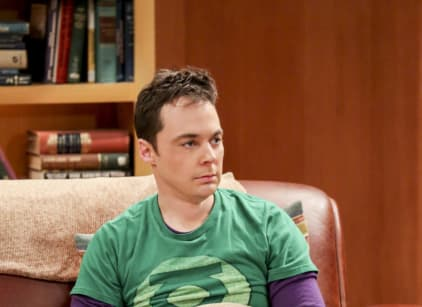 Watch The Big Bang Theory Season 10 Episode 20 Online