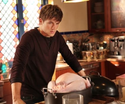 A 90210 Thanksgiving