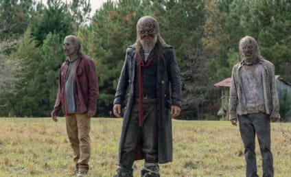 The Walking Dead Season 10 Episode 14 Review: Look at the Flowers