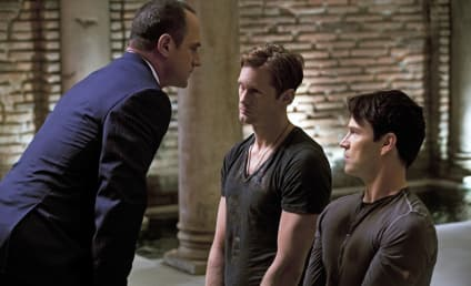 True Blood Spoilers: A Traitor Among Them?