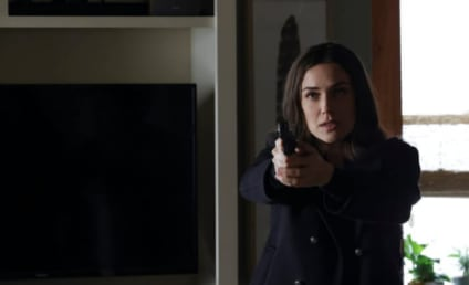 The Blacklist Spoilers: Find Out When Liz Returns!