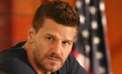 David Boreanaz Snags Lead in CBS Navy SEALS Pilot!