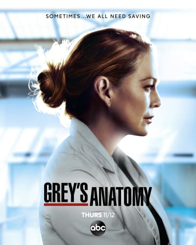 Grey's Anatomy Season 17 Poster
