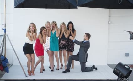 The Bachelor, Desperate Suitors Pose for InStyle
